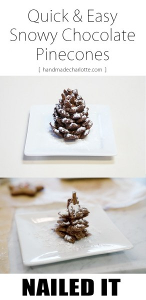 NAILED IT: Quick and Easy Snowy Pinecones
