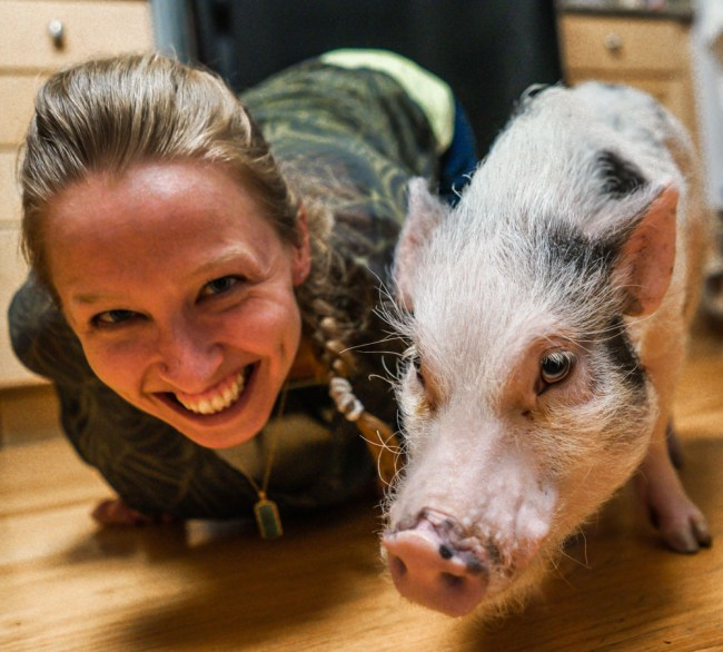 Diana Southern selfie with Priscilla pig