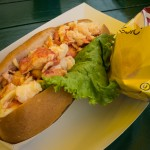 cold lobster roll in Maine