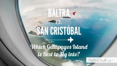 Baltra vs. San Cristóbal: Which Galápagos Island is best to fly into?