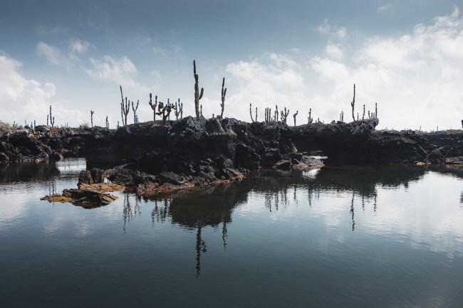 Los Túneles, Isabela Island