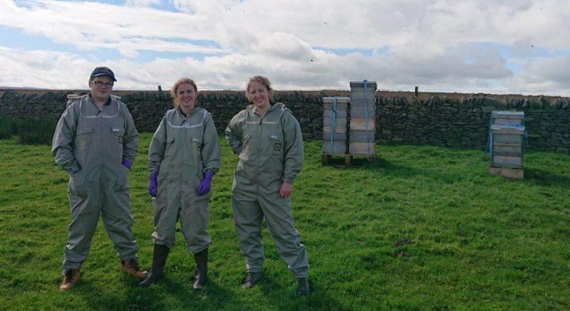 Northumberland Honey Co | Beekeepers