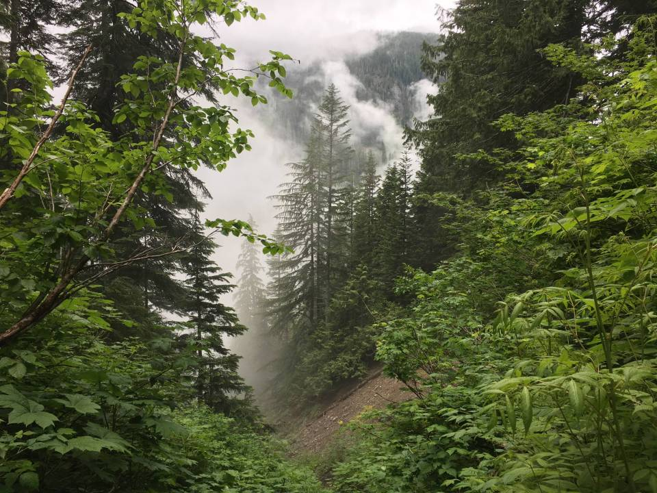 """June-uary"" weather in the Cascades."