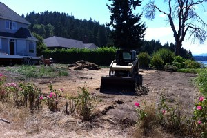 brush removal kitsap county