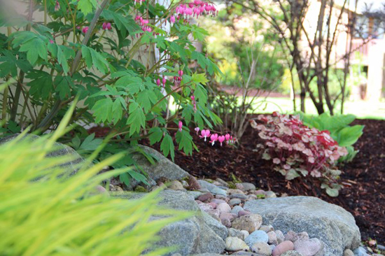kitsap county landscapers