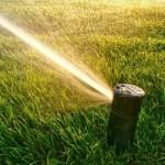 sprinkler blow-out