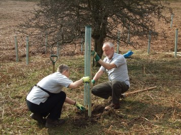 Tree planting by volunteers in the Hole of Horcum for Slowing the Flow in Pickering 2011. Copyright NYMNPA.