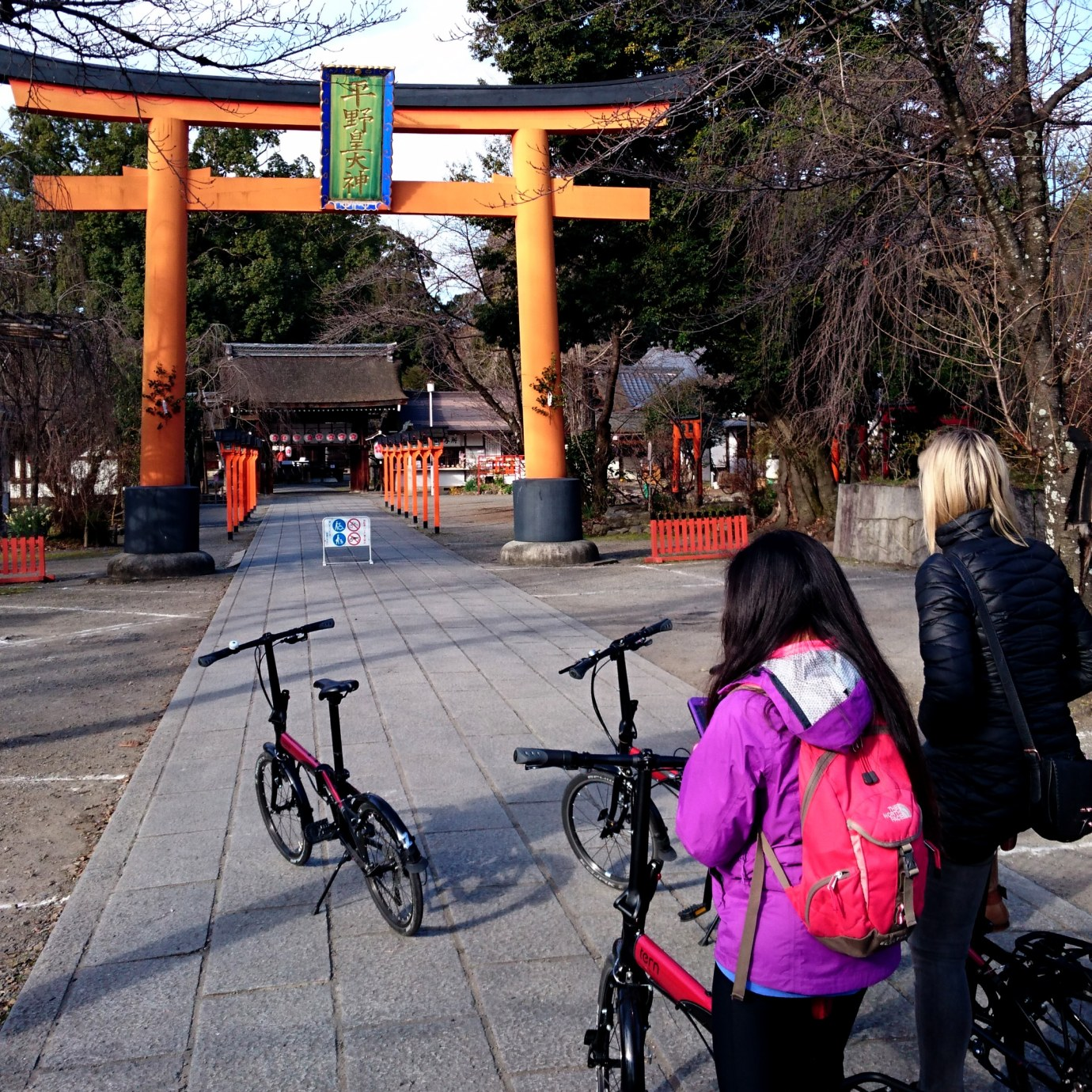 Winter morning at Hirano Shrine