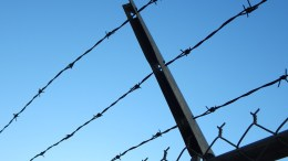Prison Fence Inmates Foreigner Trump's wall