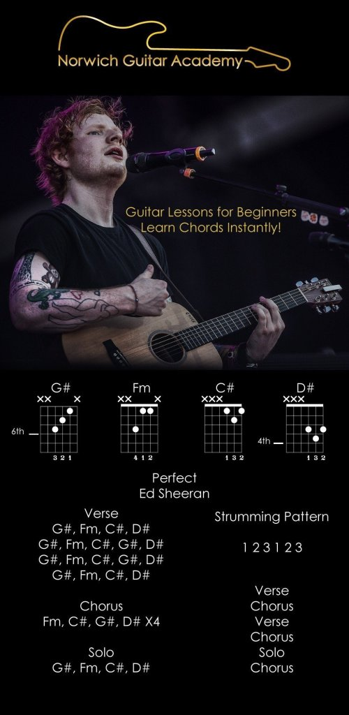 Perfect - Ed Sheeran Chords Beginner Guitar Lesson (Lyrics)