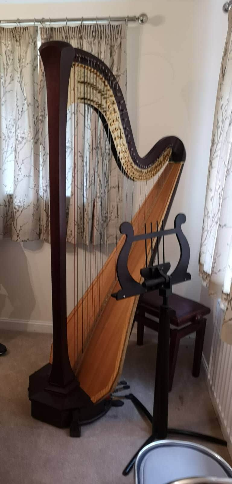 specialist-move-today-trumpets-a-piano-and-this-very-special-harp-https-t-co-jdmowaqbic