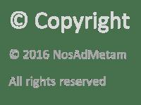 Copyright_NosAdMetam_2021_liten_Lysfarge