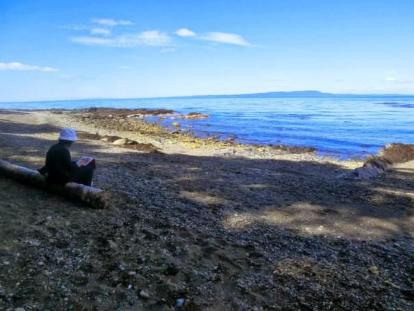 Estrecho de Magallanes (Chile, 2013)