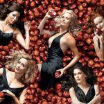 Crítica   Desperate Housewives: 2ª Temporada – Os Tours-de-Force Suburbanos