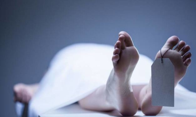 Time-lapse de 17 meses de um cadáver humano revela que se move após a morte