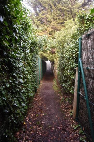 Chemins de randonnée 2