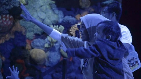 8 Encounter Coral Reef at Night Interactive