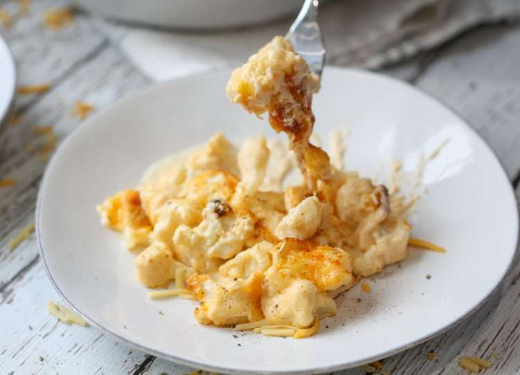 a serving of cauliflower mac and cheese on a white plate