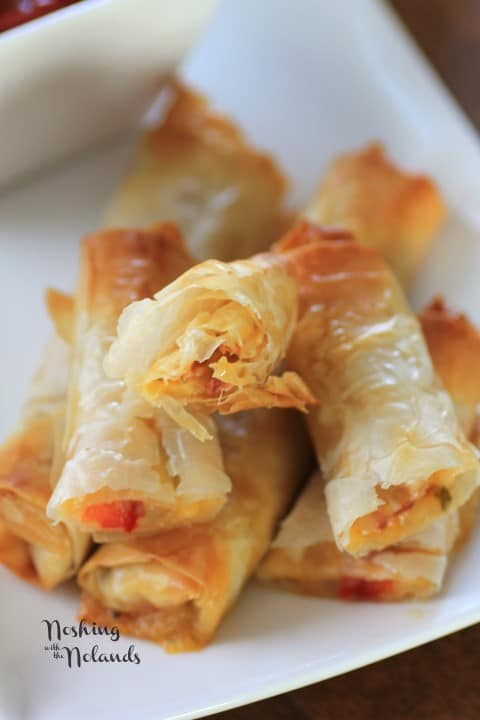 Italian Spring Rolls by Noshing With The Nolands (3) (Small)