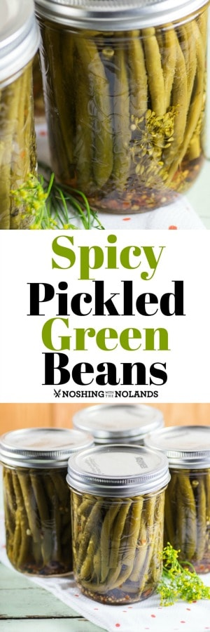 Spicy Pickled Green Beans are the perfect appetizer with charcuterie, a Bloody Mary or Caesar.