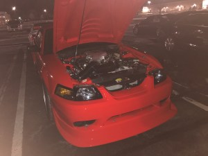 Clean Mustang