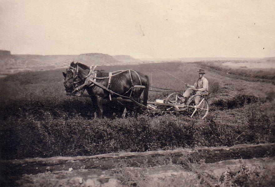 Oscar Danielson on his Crab Creek farm in Grant County, WA, circa 1920