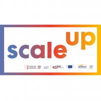 Programa intensivo de aceleración Scaleup