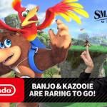 Banjo Kazooie, Smash Bros