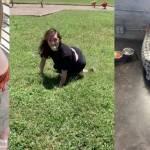 Jenna Phillips, Perro, Mujer
