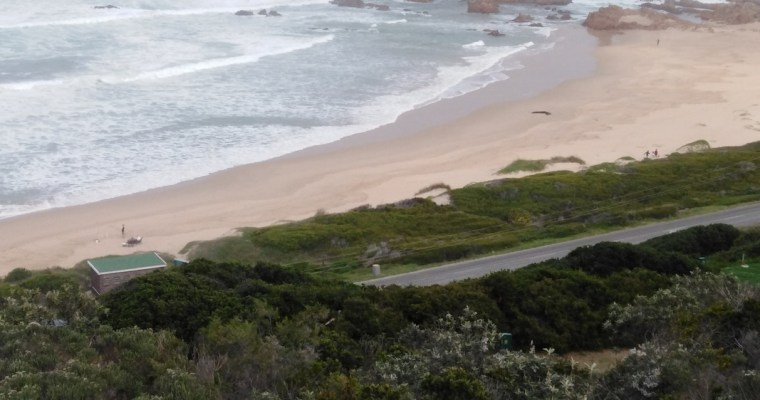 Buffalo Bay Hiking Trail – Garden Route Short Hike