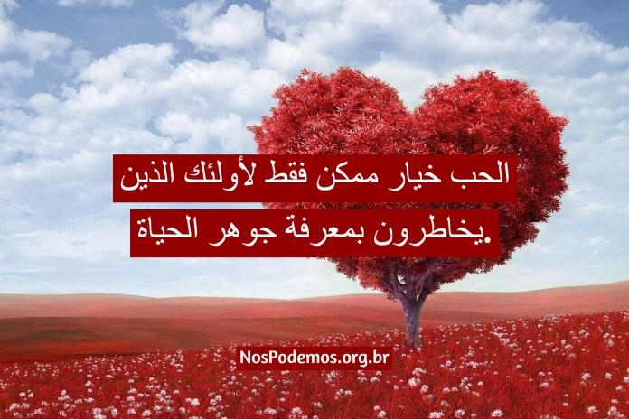 الحب خيار ممكن فقط لأولئك الذين يخاطرون بمعرفة جوهر الحياة.
