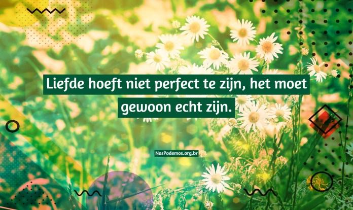 Liefde hoeft niet perfect te zijn, het moet gewoon echt zijn.