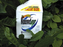 "California EPA Plans to Label Monsanto's Roundup As ""Known to Cause Cancer"""