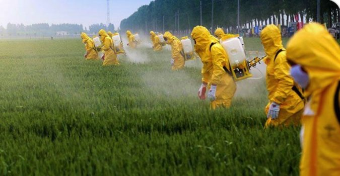 Study: You are not Gluten Intolerant; You are Glyphosate Intolerant