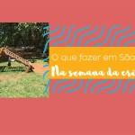 O que fazer em São Paulo na semana da criança de 2017