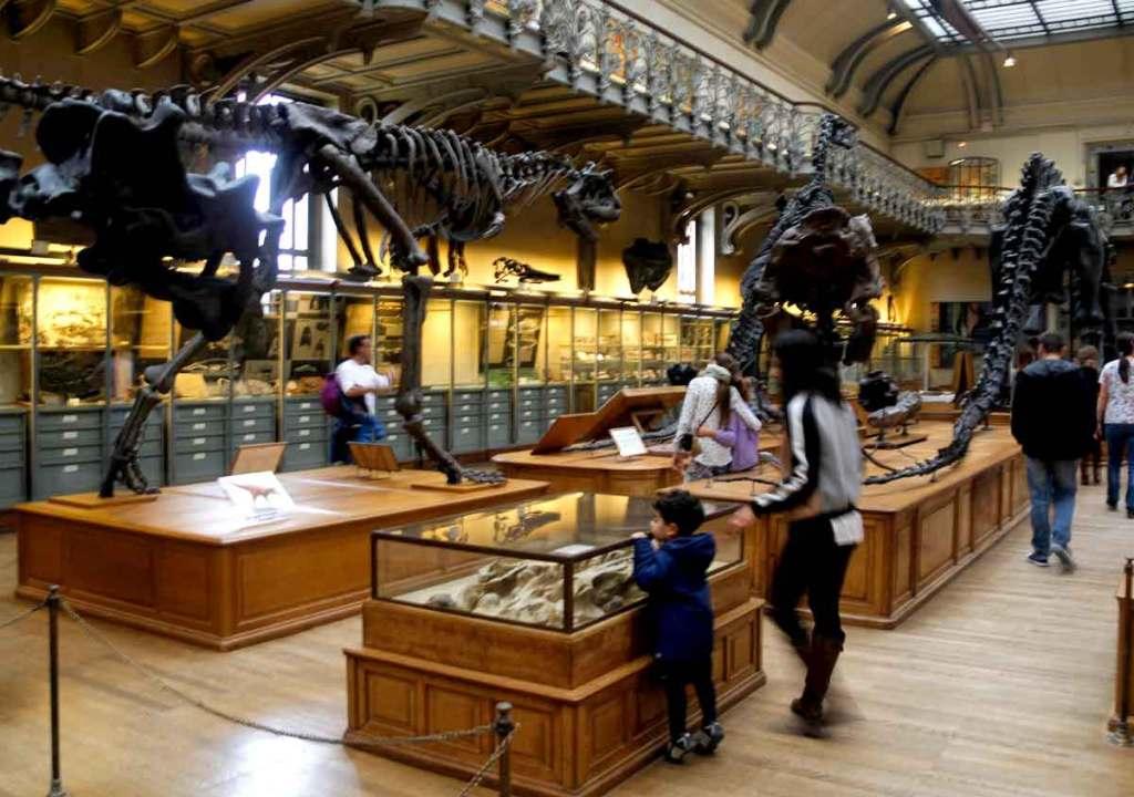 Museu de História Natural de Paris