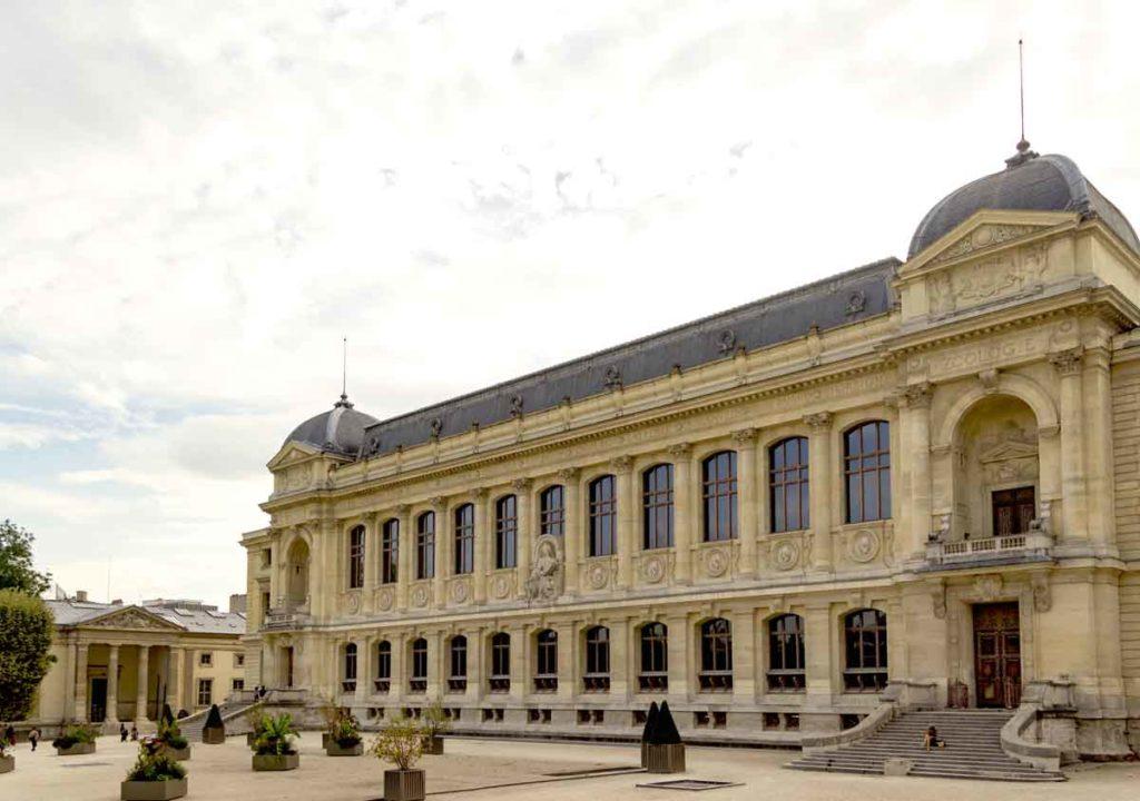 museu de historia natural de paris galerie de evolution