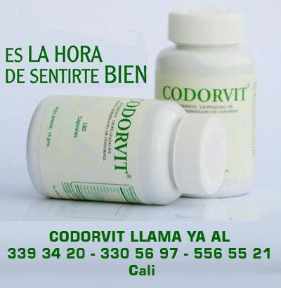codorvit