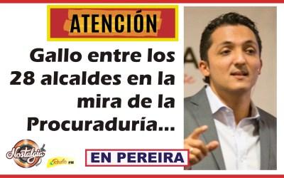 EN PEREIRA…GALLO EN LA MIRA DE LA PROCURADURIA