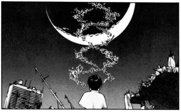 akira lune