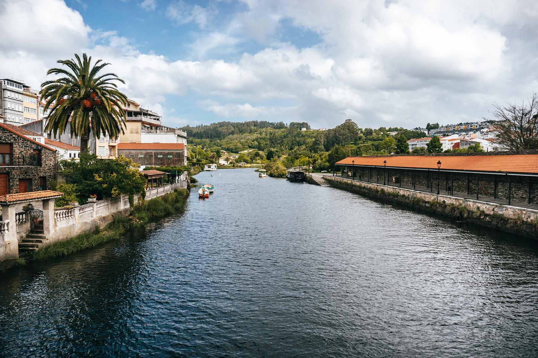 Ribera del río Mandeo (Betanzos, A Coruña)