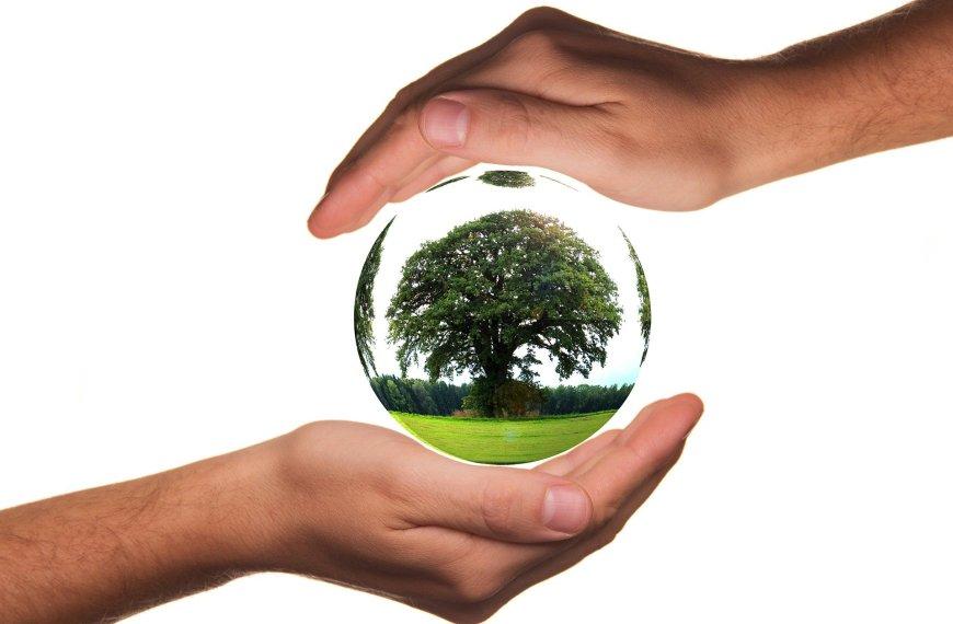 nature, découverte et loisirs vivre éco-responsable
