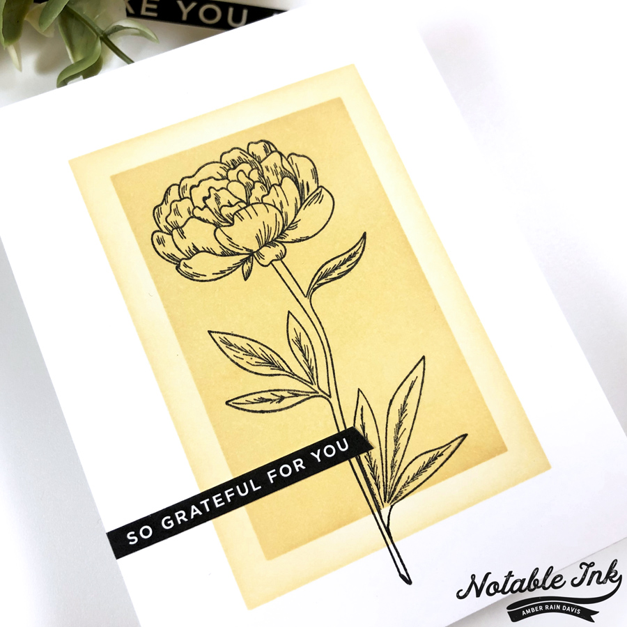 SSS Sentiment Strips & Beautiful Flowers 2