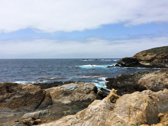 View from South Shore Trail, Point Lobos State Reserve
