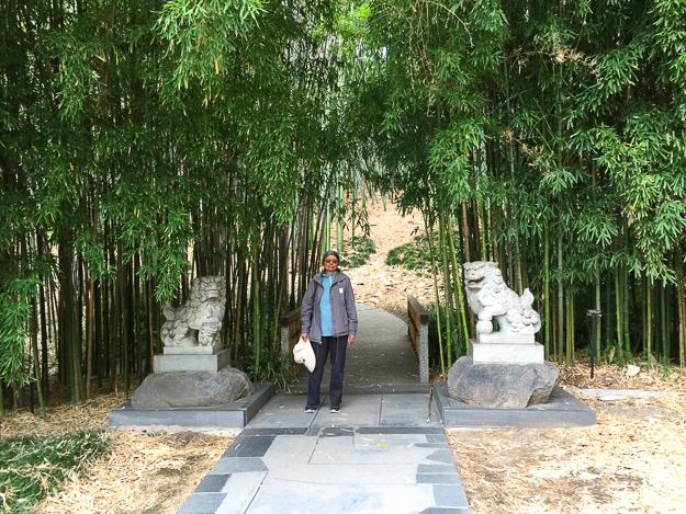 Japanese Garden Huntington Gardens Pasadena California