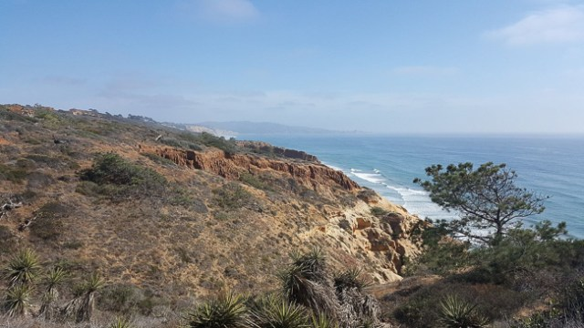 Torrey Pines State Reserve View, San Diego, California