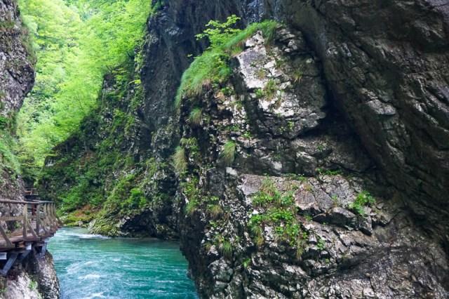 Vintgar Gorge Slovenia in the Spring