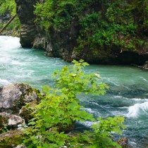 Vintgar Gorge, Slovenia: Why You Should Visit, Plus Tips for a Great Experience!
