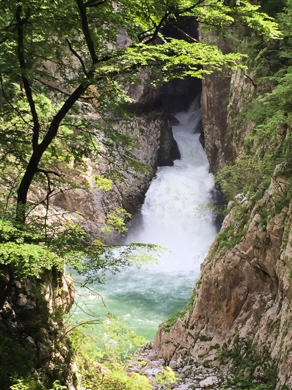 The Reka River at Divaca Slovenia