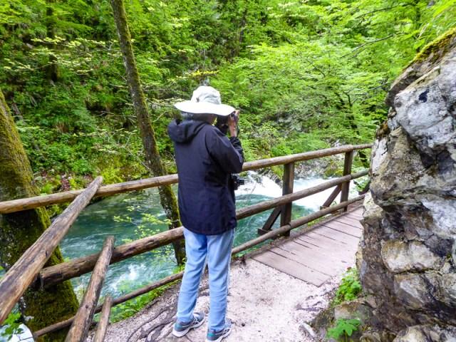 Trail at Vintgar Gorge in Slovenia